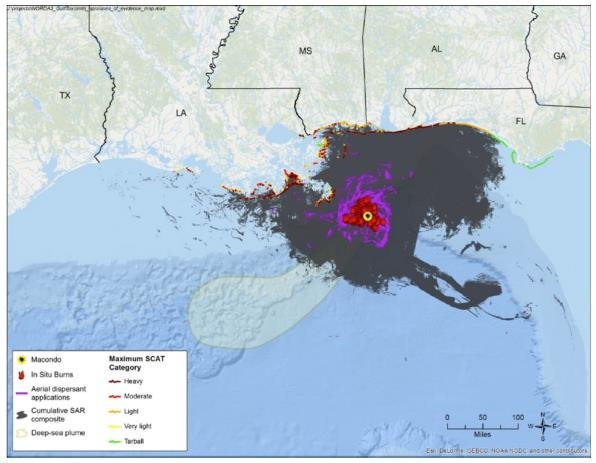 Environmental effects of the Deepwater Horizon oil spill - NIVA